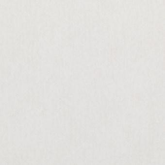 Tapetprov enfärgad, vit